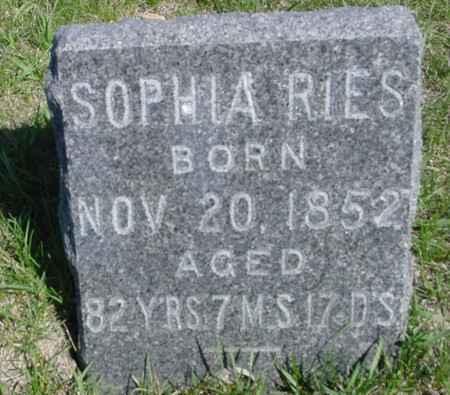RIES, SOPHIA - Crawford County, Iowa | SOPHIA RIES