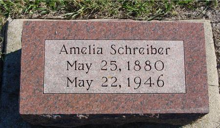 SCHREIBER, AMELIA - Crawford County, Iowa | AMELIA SCHREIBER