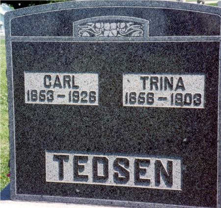 TEDSEN, CARL & TRINA - Crawford County, Iowa | CARL & TRINA TEDSEN