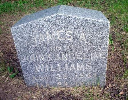 WILLIAMS, JAMES A. - Crawford County, Iowa   JAMES A. WILLIAMS