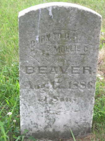 BEAVER, A SON - Dallas County, Iowa | A SON BEAVER