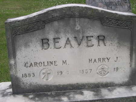 BEAVER, HARRY J. - Dallas County, Iowa | HARRY J. BEAVER