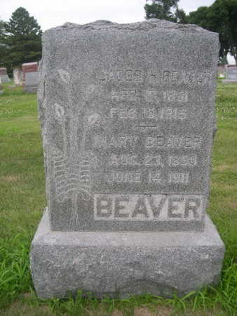 BEAVER, JACOB H. - Dallas County, Iowa | JACOB H. BEAVER