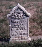 PAINTER, HARLEY - Dallas County, Iowa   HARLEY PAINTER