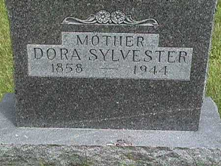 SYLVESTER, DORA - Dallas County, Iowa | DORA SYLVESTER