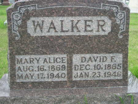WALKER, MARY ALICE - Dallas County, Iowa | MARY ALICE WALKER