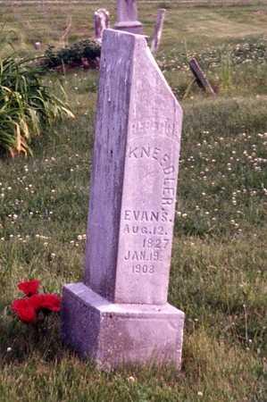 MARTIN KNEEDLER EVANS, REBECCA JANE - Davis County, Iowa | REBECCA JANE MARTIN KNEEDLER EVANS