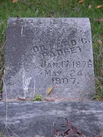 PADGET, DILLARD C - Davis County, Iowa | DILLARD C PADGET