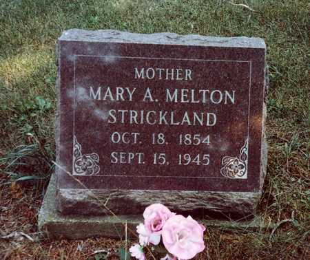 MELTON STRICKLAND, MARY A. - Davis County, Iowa | MARY A. MELTON STRICKLAND