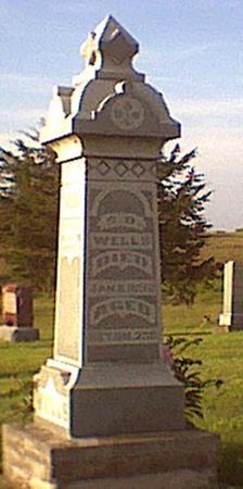 WELLS, SAMUEL D - Davis County, Iowa | SAMUEL D WELLS