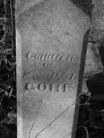 GORE, CHILDREN - Decatur County, Iowa | CHILDREN GORE