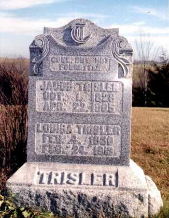 DOUGLASS TRISLER, LOUISA - Decatur County, Iowa | LOUISA DOUGLASS TRISLER