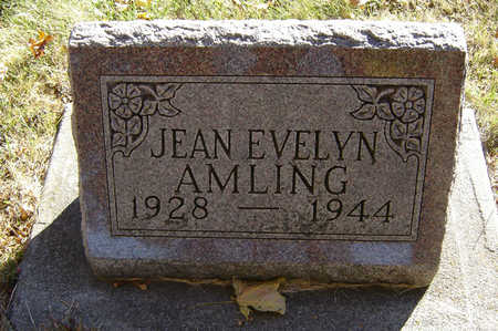 AMLING, JEAN EVELYN - Delaware County, Iowa | JEAN EVELYN AMLING