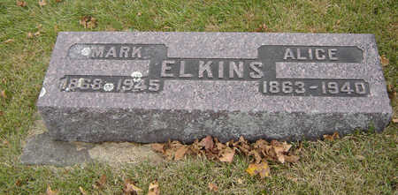 ELKINS, ALICE - Delaware County, Iowa | ALICE ELKINS