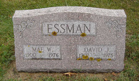 ESSMAN, DAVID J. - Delaware County, Iowa | DAVID J. ESSMAN