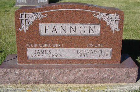 FANNON, JAMES J. - Delaware County, Iowa | JAMES J. FANNON