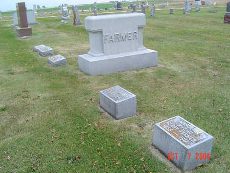 FARMER, FAMILY STONE - Delaware County, Iowa | FAMILY STONE FARMER