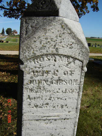 HILL GIBSON, ROSANNA - Delaware County, Iowa | ROSANNA HILL GIBSON