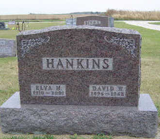 HANKINS, DAVID W. - Delaware County, Iowa | DAVID W. HANKINS