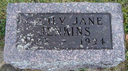 LOCKNANE JENKINS, CICILY JANE - Delaware County, Iowa | CICILY JANE LOCKNANE JENKINS