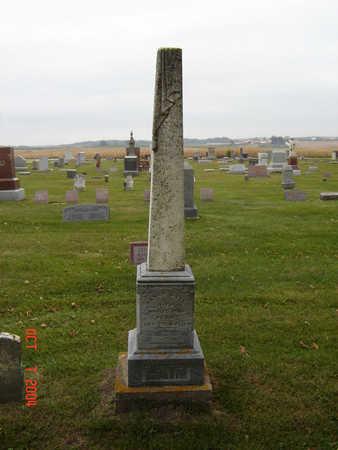 LAIN, FAMILY STONE - Delaware County, Iowa | FAMILY STONE LAIN