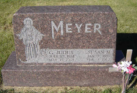 MEYER, SUSAN M. - Delaware County, Iowa | SUSAN M. MEYER
