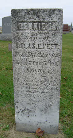 PEET, BENNIE L. - Delaware County, Iowa | BENNIE L. PEET