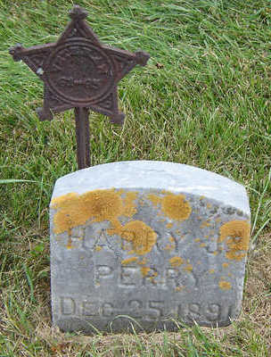 PERRY, HARRY J. - Delaware County, Iowa | HARRY J. PERRY