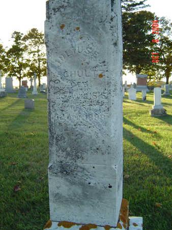 SCHULTZ, JULIUS F. J. - Delaware County, Iowa | JULIUS F. J. SCHULTZ