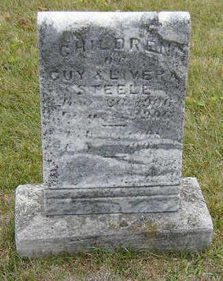 STEELE, INFANT - Delaware County, Iowa   INFANT STEELE
