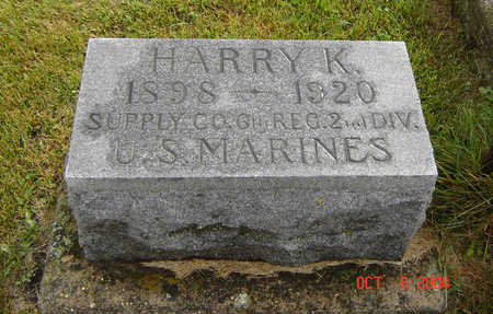WALDO, HARRY K. - Delaware County, Iowa | HARRY K. WALDO