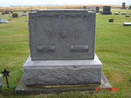 WALDO, HORACE - Delaware County, Iowa | HORACE WALDO