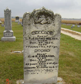 WALKER, CHARLES - Delaware County, Iowa | CHARLES WALKER