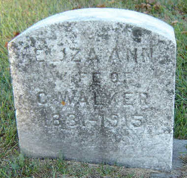 WALKER, ELIZA ANN - Delaware County, Iowa   ELIZA ANN WALKER