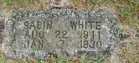 WHITE, SABIN - Delaware County, Iowa   SABIN WHITE