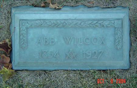 WILCOX, ABE - Delaware County, Iowa | ABE WILCOX