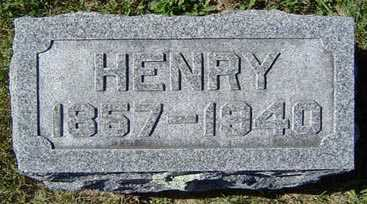 WILEY, HENRY - Delaware County, Iowa | HENRY WILEY