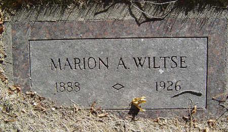 WILTSE, MARION A. - Delaware County, Iowa   MARION A. WILTSE