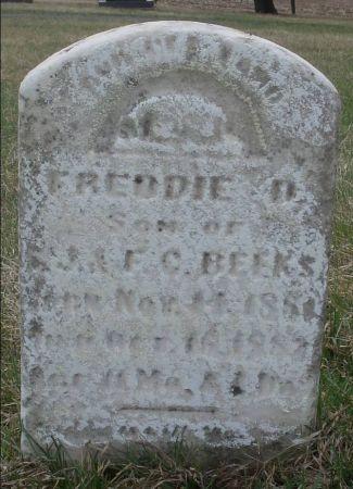 BEEKS, FREDDIE D. - Dubuque County, Iowa   FREDDIE D. BEEKS