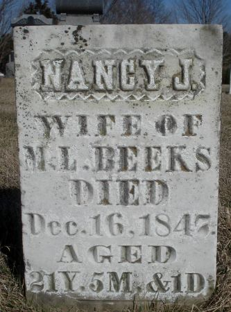 BEEKS, NANCY J. - Dubuque County, Iowa | NANCY J. BEEKS