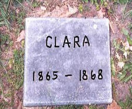 BLOCKLINGER, CLARA - Dubuque County, Iowa | CLARA BLOCKLINGER