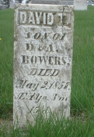 BOWERS, DAVID T. - Dubuque County, Iowa | DAVID T. BOWERS