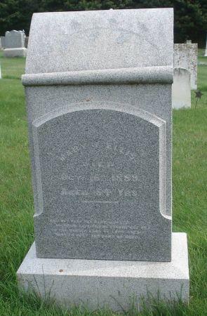 ELLIS, MARY J. - Dubuque County, Iowa | MARY J. ELLIS