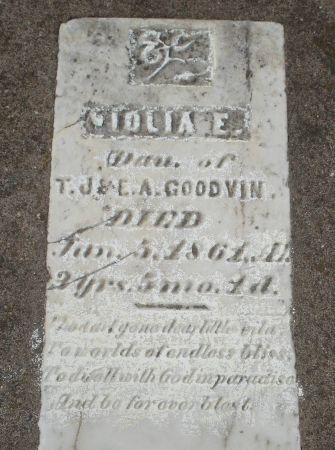 GOODVIN, VIOLA E. - Dubuque County, Iowa | VIOLA E. GOODVIN