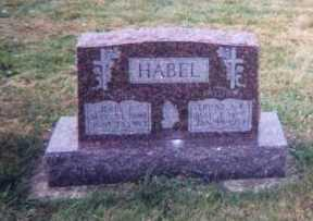 HABEL, JOHN P. - Dubuque County, Iowa | JOHN P. HABEL