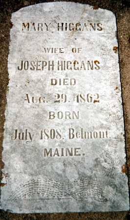 HIGGANS, MARY - Dubuque County, Iowa | MARY HIGGANS