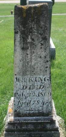KING, WILLIAM T. - Dubuque County, Iowa | WILLIAM T. KING