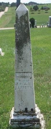 RAFFETY, MELISSA - Dubuque County, Iowa | MELISSA RAFFETY
