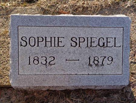 SPIEGEL, SOPHIE - Dubuque County, Iowa | SOPHIE SPIEGEL