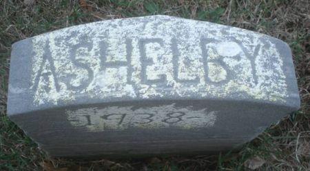 SPRAGUE, A. SHELBY - Dubuque County, Iowa | A. SHELBY SPRAGUE